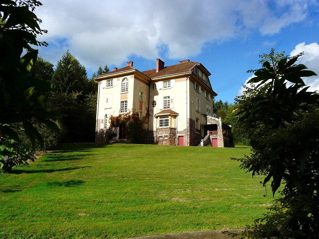 Achat Vente : Château à acheter à badonviller ()