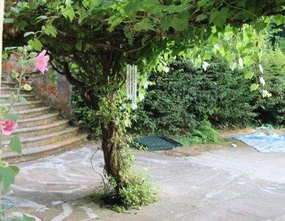 ACHETER Propriete fontenoy le chateau