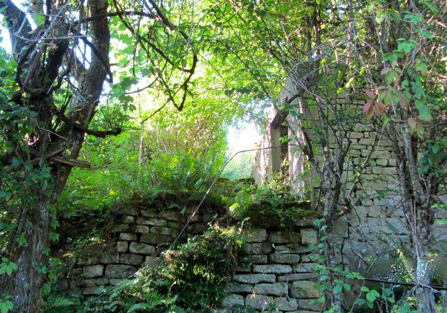 ACHETER Terrain fontenoy le chateau